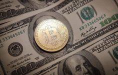 Kurumsal Bitcoin Cüzdanlarının Sayısı Büyümeye Devam Ediyor