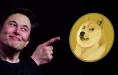 Elon Musk, Dogecoin'i işaret etti